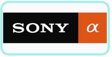 Riparazione Macchine Fotografiche Roma.Centro Assistenza Sony Alpha Riparazioni Fotocamere Frosinone